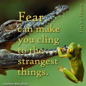 Renew your Gentle Power; Release Fear and Stress